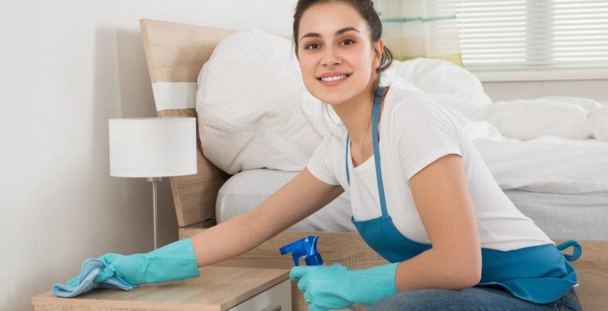 Edmonton Professional Maid